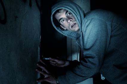 Burglar Security
